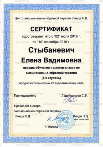 Стыбаневич сертификат